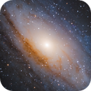 Andromeda For Dad,                                Chris Levitan
