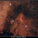IC 5070 - Peilican Nebula,                                jbconti