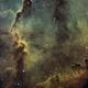 IC 1396 - Elephant's Trunk Nebula,                                canata