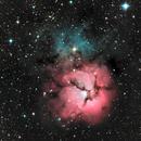 M20  Trifid Nebula,                                Roger Bertuli