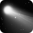 Comet Neowise closeup on the dust tail,                                Andrea Tamanti