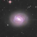 M58,                                pmneo