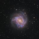 M 83,                                YIJIA ZHANG
