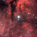 γ Cygni -  IC1318,                                Gianni Carcano