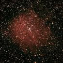 NGC6823,                                Daniele Viarani