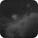 Seagull Nebula in Narrowband,                                JDJ