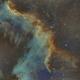 NGC7000  GreatWall,                                Seymore Stars