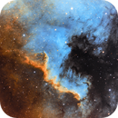 North America Nebula in SHO - NGC7000,                                AstroForum