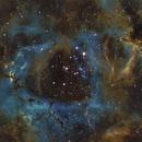 Rosette Nebula,                                Astronomy Academy