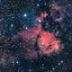 Fishhead Nebula IC1705,                                Michi Scheidegger