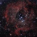 Rosette Nebula,                                Csere Mihaly