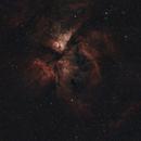 Carina Nebula Narrowband,                                Wilson