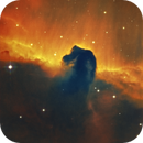 IC 434 (B33), the horse's head fog in the narrowband,                                Thomas Wahl