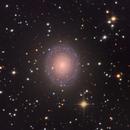 NGC7217 : A Very Round Galaxy,                                Fredd
