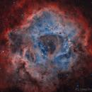 Rosette Nebula,                                DeepSkyView