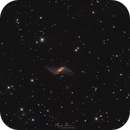 Timeless Ark ( NGC 660 ),                                Reza Hakimi