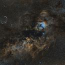 Cygnus 50mm Widefield in SHO,                                  Mario Zauner