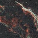 Western Veil nebula two panel mosaic,                                Roy Hagen