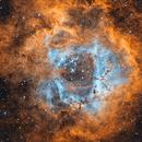 NGC 2244,                                Peter Myers