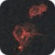 IC 1805 and IC 1848 The Heart and Soul Nebulae w Samyang 135mm f/2,                                Elmiko