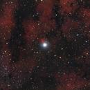 Sadr & NGC 6910,                                Terrance