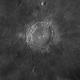 Copernicus,                                Máximo Bustamante