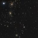 Coma Cluster,                                Andrew Barton