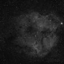 IC 1396 in H-alpha,                                Samuli Vuorinen