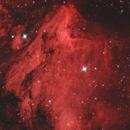 The Pelican Nebula,                                Damien Cannane