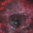 Sh2-275 - Rosette Nebula in RGB only - Hα Addition - First Light Williams Optics FLT 132,                                Uwe Deutermann