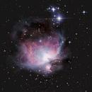 An AP Classic - The Orion Nebula,                                HaydenAstro