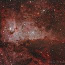 Eta Carine Nebula ,                                RCompassi