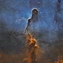 IC1396 - Elephant Trunk,                                Mikko Viljamaa
