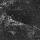NGC 6974,                    pleiade2004