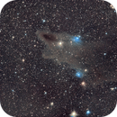 LDN1235 Shark Head nebula,                                Francis