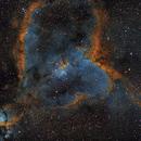 Heart Nebula,                                Finn