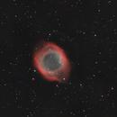 Helix,                                Cosmonauta