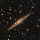 NGC 891,                                Nigel
