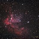 NGC 7380 The Wizard Nebula,                                NewLightObservatory