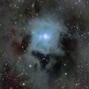 NGC 7023 Iris nebula,                                Tomas Chylek