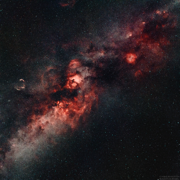Cygnus and the Northern Milky Way,                                Jason Guenzel