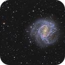 Messier 83 - The Southern Pinwheel Galaxy,                    Peter Goodhew