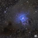 Iris Nebula NGC 7023 (Ha OSC Lum),                                Chris R White