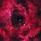 NGC 2238 Rosetta,                                Mnar