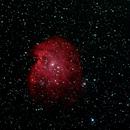 NGC 2174 - Monkey Head Nebula,                                Tullio Di Primio