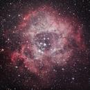 The Rosette Nebula,                                Johannes Schiehsl