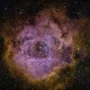 Rosette Nebula,                                Linda