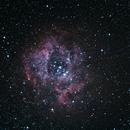 Rosetta nebula NGC2238,                                Joostie