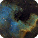 Cygnus Wall,                                  Steve MacDonald