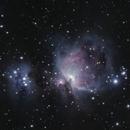 Orion Nebula (M42),                                dchaffin